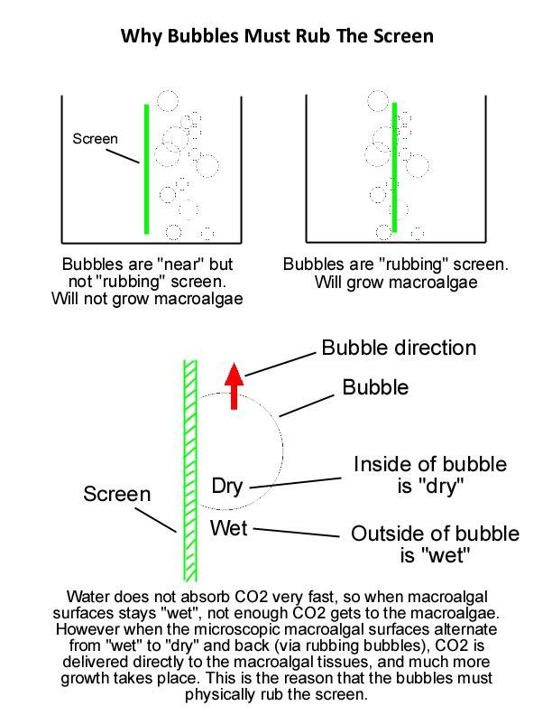 WhyBubbles.jpg